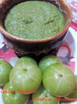 Aamla Ki Chutney ( Gooseberry ) - Plattershare - Recipes, Food Stories And Food Enthusiasts