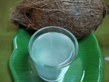 Coconut Water - Plattershare - Recipes, Food Stories And Food Enthusiasts