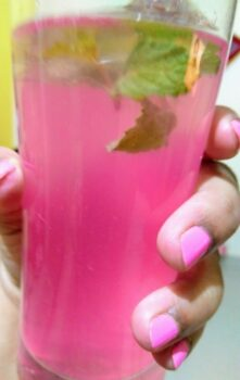 Sparkling Pink Lemonade!! - Plattershare - Recipes, Food Stories And Food Enthusiasts