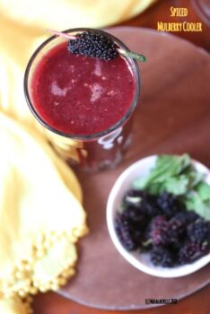 Spiced Mulberry Cooler - Plattershare - Recipes, Food Stories And Food Enthusiasts
