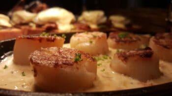 Seared Scallops , Mushroom And Leeks Fondue - Plattershare - Recipes, Food Stories And Food Enthusiasts
