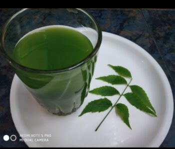 Immunity Booster Neem Drinks - Plattershare - Recipes, Food Stories And Food Enthusiasts