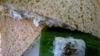 Diet Sandwich - Plattershare - Recipes, Food Stories And Food Enthusiasts