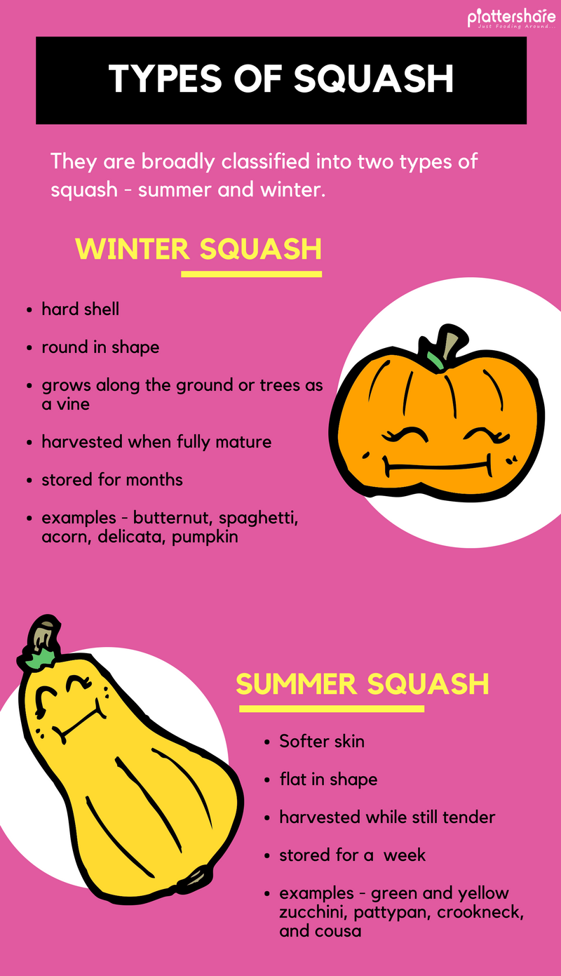 Is Squash Or Pumpkin A Fruit Or Vegetable? [Infographic] Types Of Squash, Nutritional Benefits, And Much More... - Plattershare - Recipes, Food Stories And Food Enthusiasts