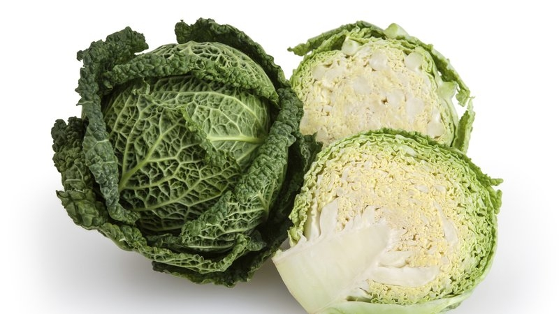 Cabbage - 7 Secret Health Benefits, How To Grow Cabbage And Much More - Plattershare - Recipes, Food Stories And Food Enthusiasts