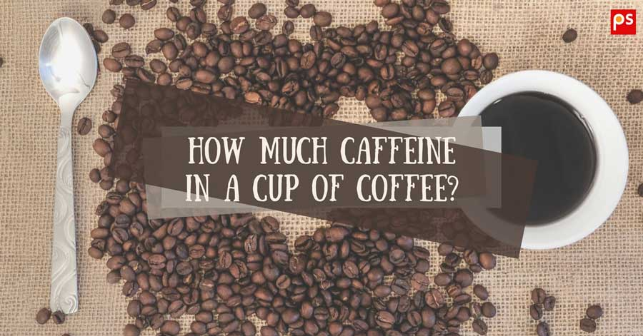 How Much Caffeine In A Cup Of Coffee In Starbucks And Different Coffee Types? - Plattershare - Recipes, Food Stories And Food Enthusiasts