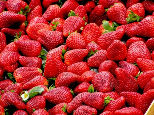 Types Of Berries, Health Benefits And Berry Recipes - Plattershare - Recipes, Food Stories And Food Enthusiasts