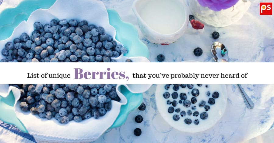 List Of Unique Berries That You'Ve Probably Never Heard Of (With Pictures) - Plattershare - Recipes, Food Stories And Food Enthusiasts
