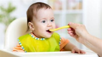 Essential Tools For Home Made Baby Food - Plattershare - Recipes, Food Stories And Food Enthusiasts